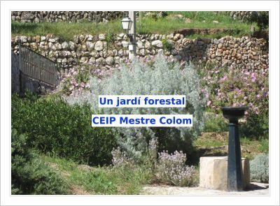 Un-jardí-forestal-al-CEIP-Mestre-Colom-1_opt